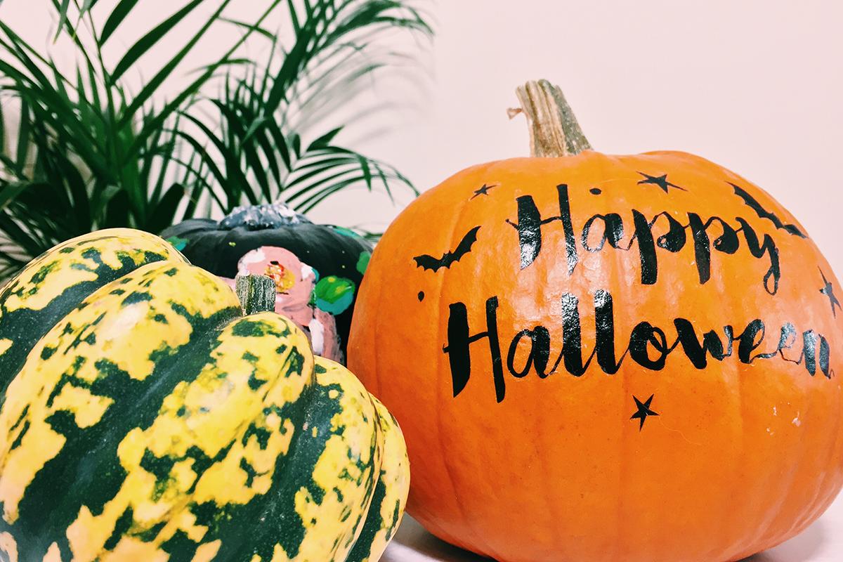 no carve pumpkin 8