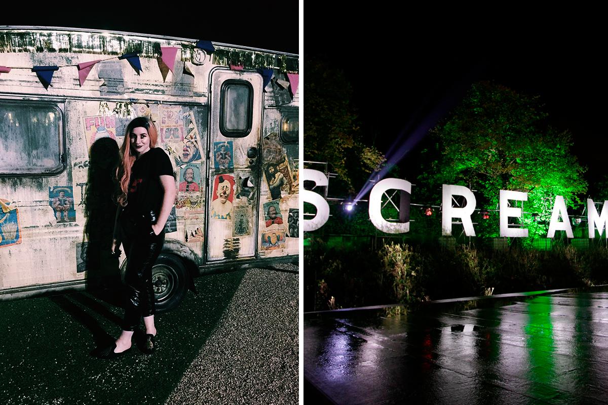 screamland 8